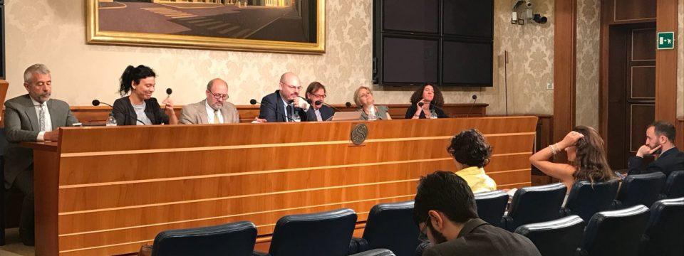 Nono Libro Bianco, la conferenza stampa